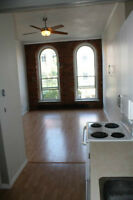 Rent 1 Bedroom Apt in Historic Loft in Belleville NOW