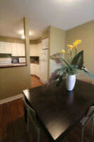Beautiful Renovated North End Town Home In St. Catharines