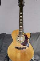 Takamine 12 String electric acoustic