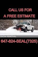 SNOW & ICE REMOVAL  per season or by the push