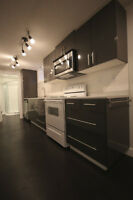 NEWLY RENOVATED MODERN 1 BEDROOM BASEMENT SUITE available Aug 1