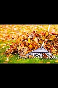 FALL YARD CLEAN-UP.   AND LAWN CARE! Peterborough Peterborough Area image 3