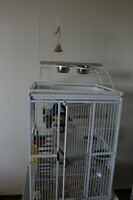 Large Conure / Parrot Cage / for any birds