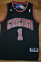 NEW w/Tags Derrick Rose All Embroidered Jersey
