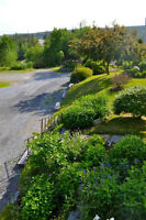 Birchill Bed & Breakfast & Guesthouse on the Eastern Shore