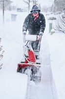 CAPREOL SNOWBLOWING $25