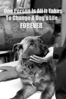 SUPPORTERS OF ALBERTA ANIMAL RESCUES