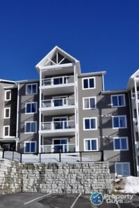 Spectacular view, carefree living, 2 bed/2 bath!
