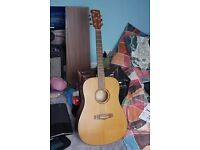 Ibanez AW-55 Acoustic Guitar (Full size)