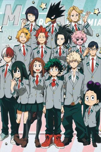 My Hero Academia Poster Boku no hero Group High Grade Glossy Laminated
