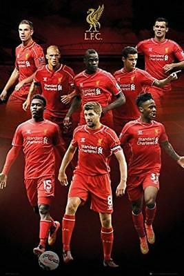 Liverpool Players 2014 - 2015 - Maxi Poster 61cm x 91.5cm new and sealed