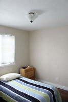 Room Available in Clean Quiet House (August 1st)