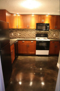 Beautiful Basement Suite in New Subdivision (Morinville)