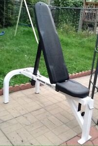 Northern Lights Flat/Incline Bench