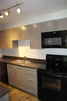 GORGEOUS Newly Renovated Units! Available NOW!