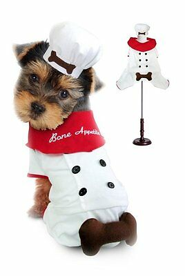 - Chef Hund Kostüme