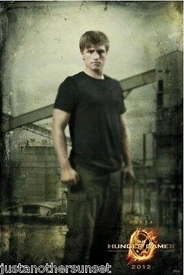 Neca Hunger Games Movie Poster Party Room Decor Peeta District 12 catching - Hunger Games Decorations