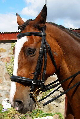 FSS English COMFORT padded crown DOUBLE WEYMOUTH Crank Cavesson Dressage Bridle Dressage Weymouth Bridle