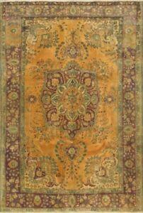 GENUINE PERSIAN 6x10 Persian Rugs Showroom Open to Public