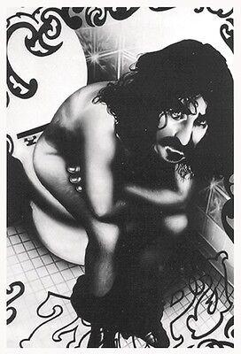 Frank Zappa Poster Sitting on Toilet !!