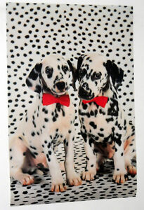 DALMATIANS PUPPIES POSTER FROM 1996