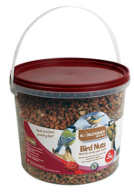 BSA quality wild bird peanuts bird food safe nuts 5kg reuseable storage tub box