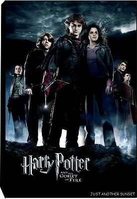 Harry Potter Goblet of Fire Stretched Canvas Art Limited Edition