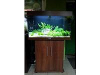 Juwel Rio 180 in dark beachwood marine tropical fish tank aquarium