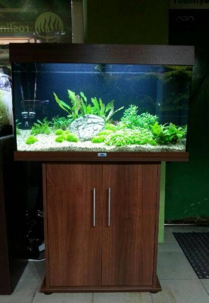 JEWEL RIO 125 LITRE FISHTANK IN DARKWOOD WITH CABINET IN IMMACULATE CONDITION