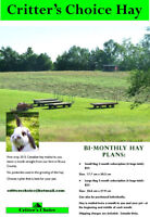 Small Pet Hay!  Fresh Canadian Hay!  Hay Plans Available!