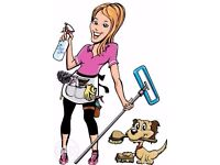 Professional Cleaning Service - reference available from many satisfied customers