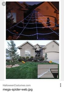 WANTED: Giant Spider Web