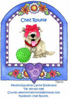 Garderie pour chien en milieu familiale (Boisbriand)