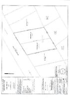 Rare 1/2 Acre subdividable double building lot on Woodstock Road