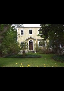 Room for rent downtown , beautiful clean home  St. John's Newfoundland image 1