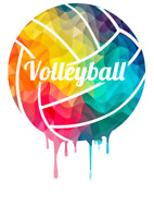 Adult female looking to play volleyball