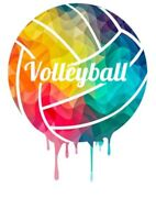 Need 2 players for our Women's Volleyball Team