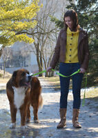 Pet Concierge Plus: Professional Pet Sitting, Dog Walking & More