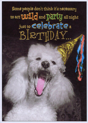 Poodle with Party Hat Funny Birthday Card - Greeting Card by Designer Greetings