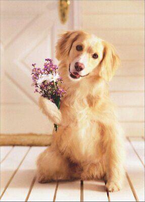 Dog Holding Bouquet of Flowers Golden Labrador Retriever Mother's Day Card ()