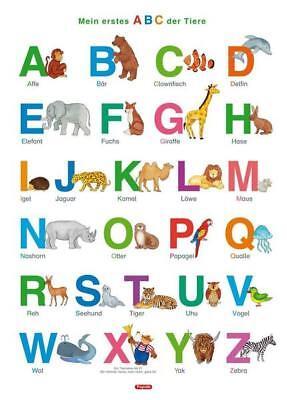 Fragenbär-Lernposter: Mein erstes ABC der Tiere, M 50 x 70 cm