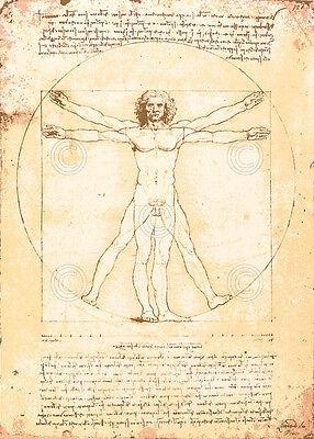 Leonardo Da Vinci Vitruvian Man Renaissance Drawing Vintage Print Poster 11x14