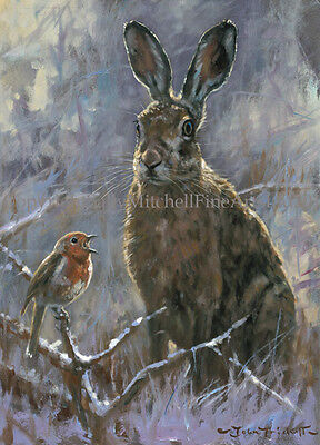 Hare and Robin Christmas Cards pack of 10 by John Trickett. C517X