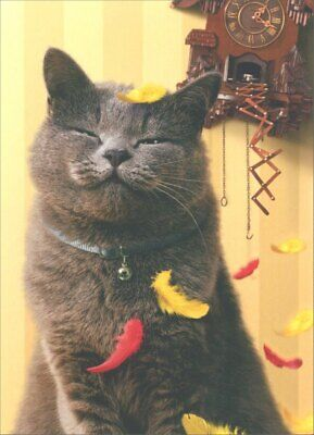 Satisfied Cat with Cuckoo Clock Birthday Card - Greeting Card by Avanti Press