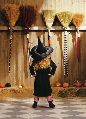Funny Halloween Cards (Little Witch Choosing A Broom Funny Halloween Card by Avanti)