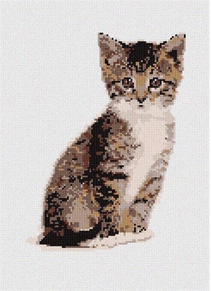 Kitty Needlepoint Kit or Canvas (Cat/Animal)