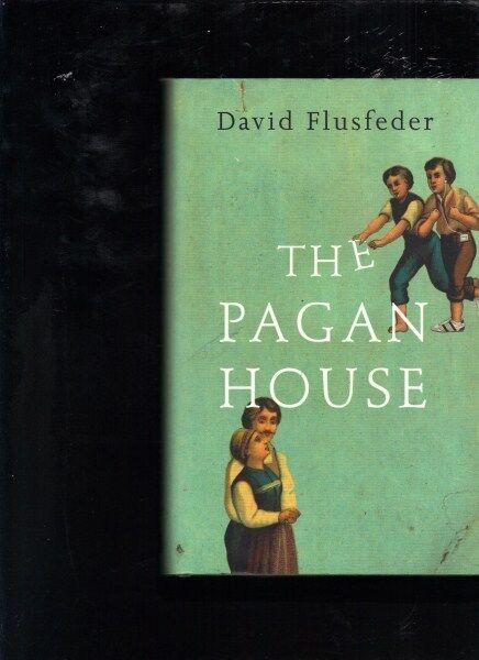 The Pagan House by David Flusfeder (Hardback)