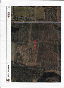 land for sale or acreage