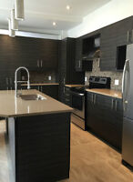 BEAUTIFUL NEWLY RENOVATED 7 1/2 FOR RENT IN THE PLATEAU