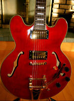Epiphone Hollow Body Guitar REDUCED
